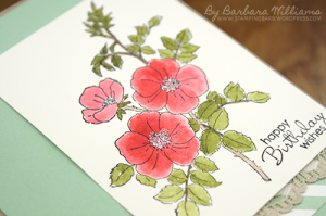 Barbara Williams |Brair Rose | Stampin Up